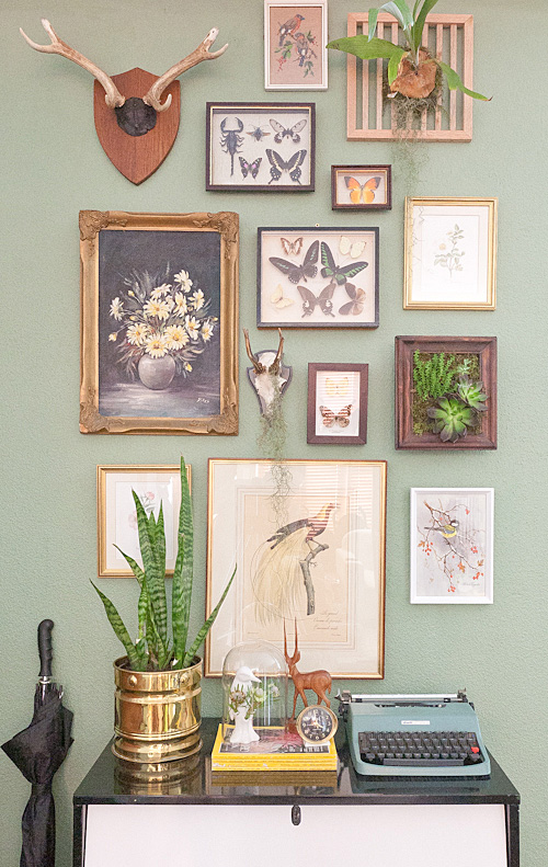Natural history curate this space - Eclectic picture frame wall ...
