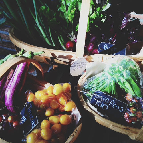 Fresh vegetables at La Motte